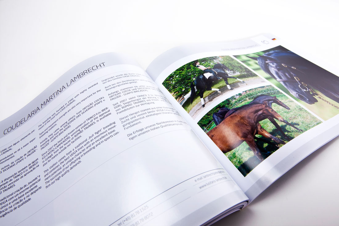 CatálogoAPSL_05
